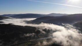 Καταπληκτικό τοπίο Carpathians Πρωί της Misty, ομίχλη πέρα από την κοιλάδα και ποταμός, κωνοφόρα δάση στις κλίσεις Ομαλή μύγα φιλμ μικρού μήκους