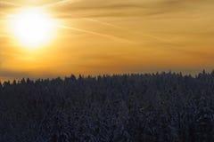 Καταπληκτικό φως του ήλιου σε έναν χρυσό ουρανό επάνω από το δάσος έναν χειμώνα στοκ εικόνα