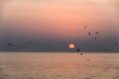 Καταπληκτικά κόκκινα κύματα ηλιοβασιλέματος στην παραλία Salalah Ομάν 2 Στοκ εικόνες με δικαίωμα ελεύθερης χρήσης