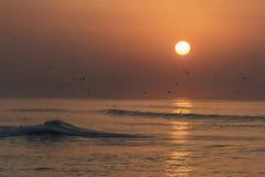 Καταπληκτικά κόκκινα κύματα ηλιοβασιλέματος στην παραλία Salalah Ομάν 4 Στοκ εικόνα με δικαίωμα ελεύθερης χρήσης