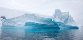 Καταπληκτικά παγόβουνα Στοκ εικόνα με δικαίωμα ελεύθερης χρήσης
