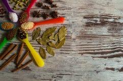 Καταπληκτικά φρέσκα αρωματικά καρυκεύματα στα κουτάλια υπό μορφή κύκλου Στοκ φωτογραφία με δικαίωμα ελεύθερης χρήσης