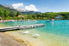 Καταπληκτική άποψη σχετικά με τη μαρίνα με τον κύκνο στη λίμνη Annecy, Γαλλία Στοκ φωτογραφία με δικαίωμα ελεύθερης χρήσης