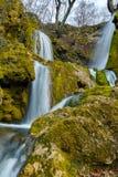 Καταπληκτική άποψη του βαθιού δασικού καταρράκτη κοντά στο χωριό Bachkovo, Βουλγαρία Στοκ Εικόνες