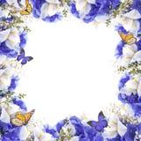 Καταπληκτική νεράιδα πεταλούδων των λουλουδιών Στοκ φωτογραφίες με δικαίωμα ελεύθερης χρήσης