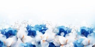 Καταπληκτική νεράιδα πεταλούδων των λουλουδιών Στοκ Φωτογραφίες