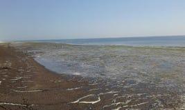 Καταπληκτική φωτογραφία θάλασσας για την ταπετσαρία στην οθόνη Στοκ Φωτογραφία