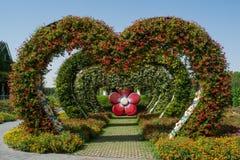 Καταπληκτική όμορφη πράσινη αλέα αψίδων καρδιών που γίνεται από τα λουλούδια στον κήπο Στοκ Εικόνες