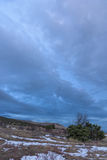 Καταπληκτικός γκρίζος δραματικός ουρανός με τον ιουνίπερο στο μέτωπο Ρωσία, Stary Krym Στοκ Φωτογραφίες