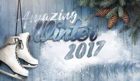 Καταπληκτικός χειμώνας 2017 Στοκ φωτογραφία με δικαίωμα ελεύθερης χρήσης