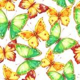 Καταπληκτικό ζωηρόχρωμο υπόβαθρο με τις πεταλούδες Στοκ εικόνα με δικαίωμα ελεύθερης χρήσης