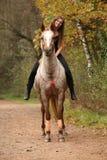 Καταπληκτικό κορίτσι που οδηγά ένα άλογο χωρίς χαλινάρι Στοκ Εικόνα