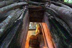 Καταπληκτικό κτύπημα Kung, Ταϊλάνδη Wat Στοκ Εικόνα