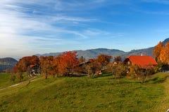 Καταπληκτικό πανόραμα φθινοπώρου στην Ελβετία apls κοντά στην πόλη του Ίντερλεικεν Στοκ φωτογραφία με δικαίωμα ελεύθερης χρήσης