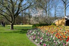 Καταπληκτικό τοπίο με τα ζωηρόχρωμα κρεβάτια λουλουδιών και τα σχέδια λουλουδιών Στοκ Φωτογραφίες