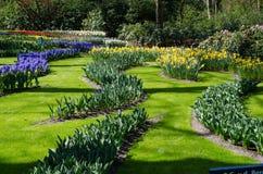 Καταπληκτικό τοπίο με τα ζωηρόχρωμα κρεβάτια λουλουδιών και τα σχέδια λουλουδιών Στοκ Φωτογραφία