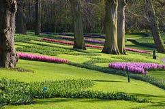 Καταπληκτικό τοπίο με τα ζωηρόχρωμα κρεβάτια λουλουδιών και τα σχέδια λουλουδιών Στοκ Εικόνες