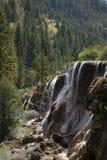 Καταρράκτες από το δάσος πεύκων Στοκ Εικόνες