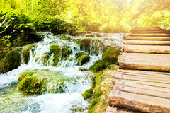 Καταρράκτες στο εθνικό πάρκο λιμνών Plitvice στην Κροατία Στοκ εικόνες με δικαίωμα ελεύθερης χρήσης