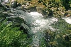 Καταρράκτες στο φαράγγι ποταμών στοκ εικόνες