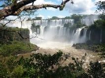 Καταρράκτες Iguazu στοκ φωτογραφίες