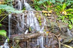καταρράκτης κήπων Στοκ εικόνα με δικαίωμα ελεύθερης χρήσης