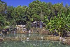 Καταρράκτης και μια λίμνη με το σαφές νερό στο πάρκο παραλιών antalya Τουρκία Στοκ εικόνα με δικαίωμα ελεύθερης χρήσης
