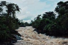 καταρράκτης κατά μήκος του mekong ποταμού στην παραμεθώρια περιοχή 4000 νησιών στη μέση της ζούγκλας τροπικών δασών στοκ φωτογραφίες με δικαίωμα ελεύθερης χρήσης