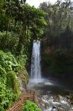 Καταρράκτης Κόστα Ρίκα Λα Παζ Στοκ φωτογραφίες με δικαίωμα ελεύθερης χρήσης