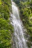 Καταρράκτης Λα Fortuna Arenal στο εθνικό πάρκο, Κόστα Ρίκα Στοκ εικόνες με δικαίωμα ελεύθερης χρήσης