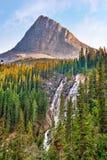 Καταρράκτης λιμνών Grassi στη χώρα Kananaskis Αλμπέρτα Καναδάς στοκ εικόνες