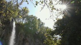 Καταρράκτης μεταξύ της πρασινάδας στον ήλιο απόθεμα βίντεο