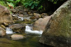 Καταρράκτης με την πέτρα του πράσινου βρύου στο τροπικό δάσος, Kiriwong Vil Στοκ Εικόνες