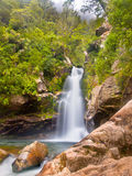 Καταρράκτης Νέα Ζηλανδία τροπικών δασών στοκ φωτογραφία με δικαίωμα ελεύθερης χρήσης
