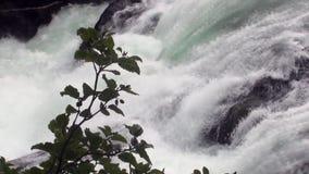 Καταρράκτης ποταμών βουνών στην Αλάσκα φιλμ μικρού μήκους