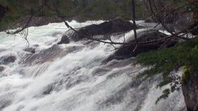 Καταρράκτης ποταμών βουνών στην Αλάσκα απόθεμα βίντεο
