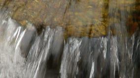 Καταρράκτης ποταμών βουνών στο δάσος φιλμ μικρού μήκους