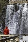 Καταρράκτης πτώσεων του Hayden Στοκ εικόνες με δικαίωμα ελεύθερης χρήσης