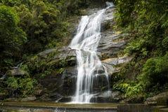 Καταρράκτης Ρίο ντε Τζανέιρο στο δάσος Tijuca στοκ εικόνα