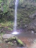 Καταρράκτης Ρίο Agrio Κόστα Ρίκα στοκ φωτογραφίες