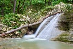 Καταρράκτης σε έναν ποταμό βουνών με το πράσινο πράσινο δάσος νερού και άνοιξη στις τράπεζες στοκ εικόνα