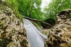 Καταρράκτης σε έναν ποταμό βουνών με το πράσινο πράσινο δάσος νερού και άνοιξη στις τράπεζες στοκ φωτογραφία