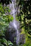 Καταρράκτης σε Maui Χαβάη Στοκ φωτογραφία με δικαίωμα ελεύθερης χρήσης