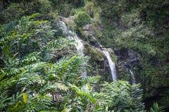 Καταρράκτης σε Maui Χαβάη Στοκ Φωτογραφία
