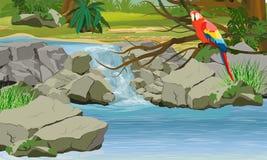 Καταρράκτης στη ζούγκλα Φωτεινός παπαγάλος macaw στους κλάδους ενός τροπικού δέντρου απεικόνιση αποθεμάτων