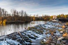 Καταρράκτης στον ποταμό Έβρου Στοκ Εικόνες