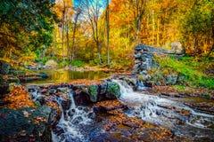 Καταρράκτης στο δάσος φθινοπώρου Στοκ Φωτογραφίες