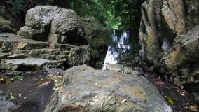 Καταρράκτης στο βαθύ δάσος ζουγκλών Koh Samui HD απόθεμα βίντεο