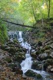 Καταρράκτης στο δάσος Στοκ φωτογραφίες με δικαίωμα ελεύθερης χρήσης