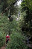 Καταρράκτης στο εθνικό πάρκο του Vicente Perez Rosales, Χιλή στοκ εικόνες